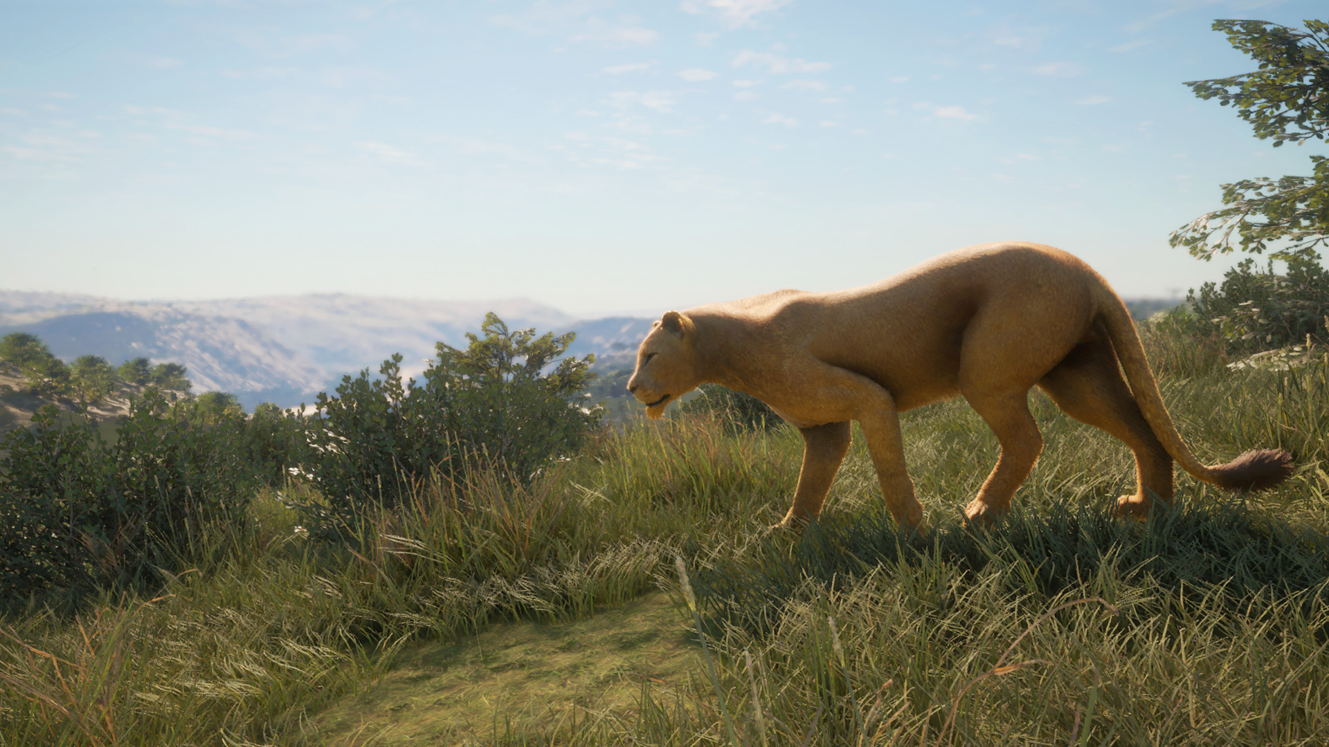 theHunter: Call of the Wild - New Species 2019 screenshot