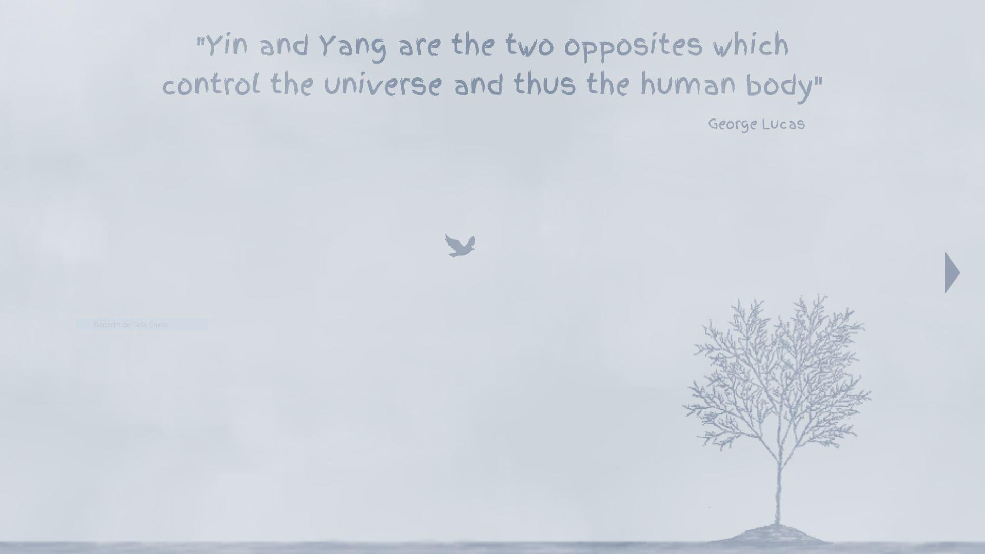 Yin Yang screenshot