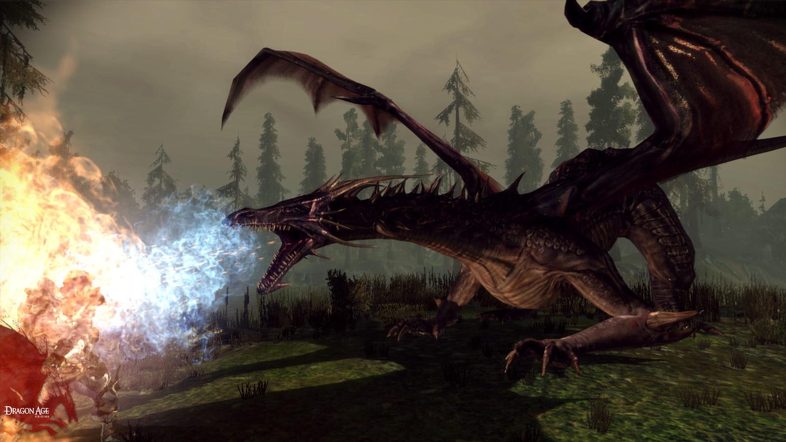 (Dragon Age: Origins, Bioware)