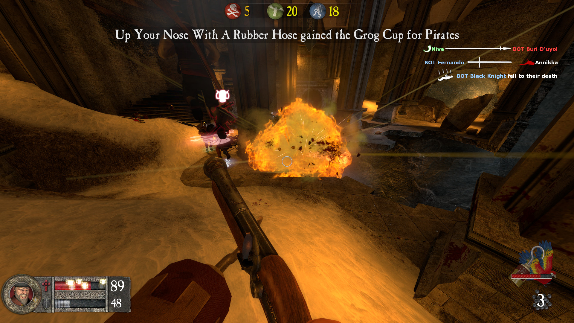 Pirates, Vikings, and Knights II screenshot