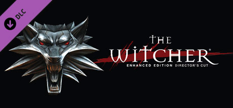 The Witcher: Director's Cut Update