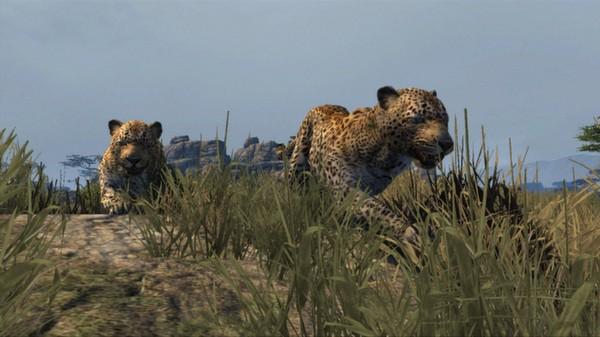 скриншот Cabela's Dangerous Hunts 2013 3