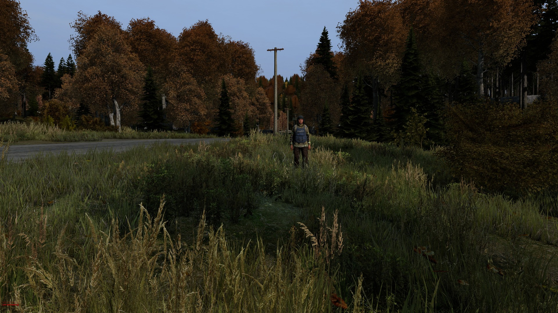how to play arma 2 dayz