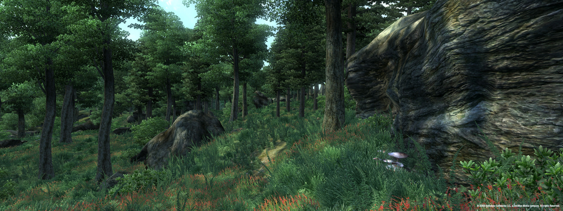 download the elder scrolls iv oblivion game of the year edition deluxe