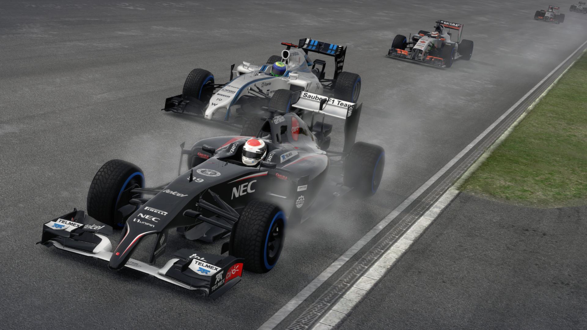 F1 2014 screenshot
