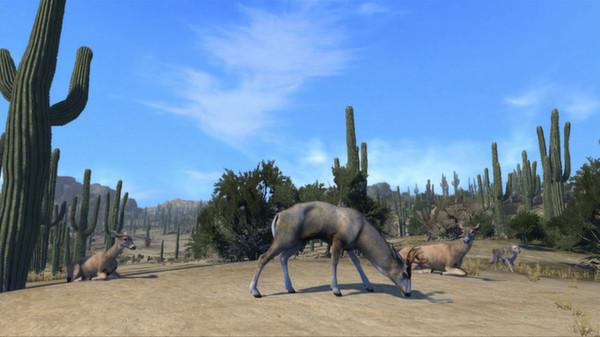 скриншот Cabela's Big Game Hunter Pro Hunts 3