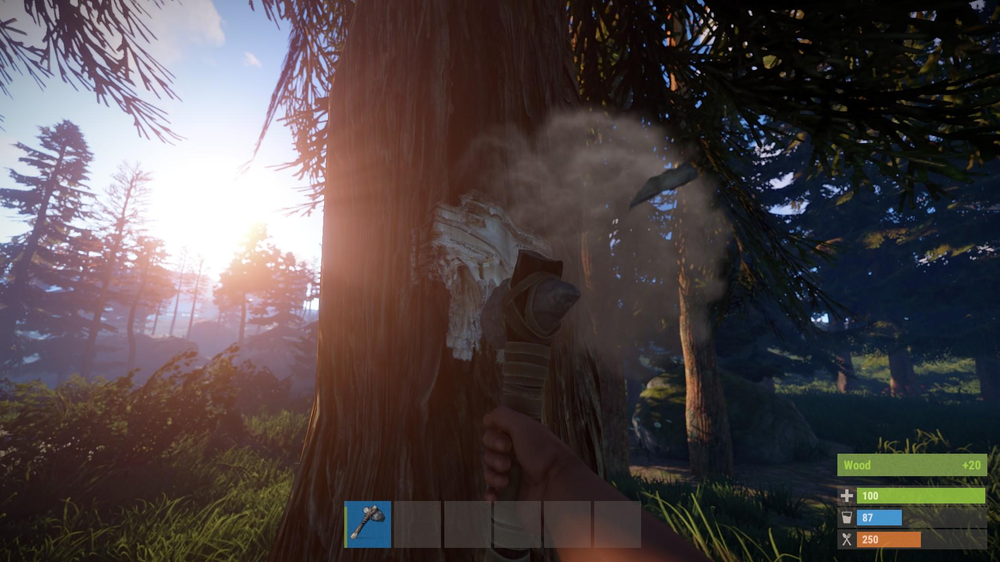 Rust screenshot