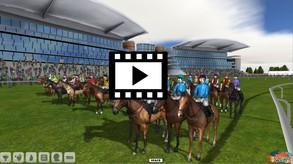 Starters Orders 6 Horse Racing