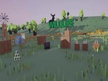 Wildlife VR