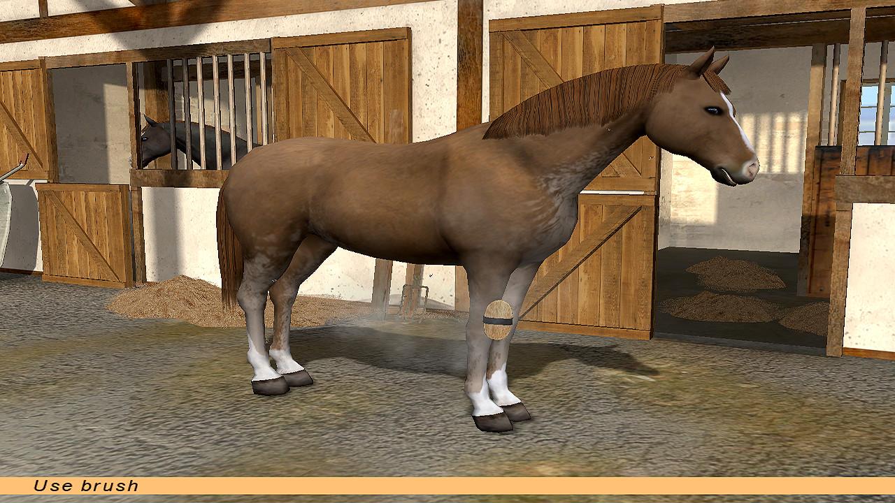Riding Star - Horse Championship! screenshot