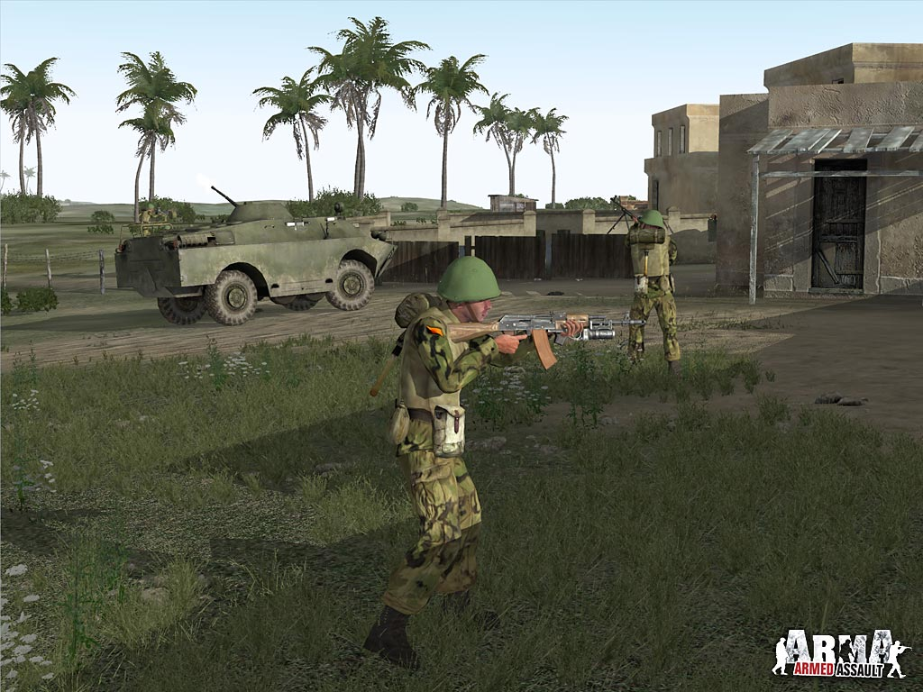 ARMA: Combat Operations screenshot