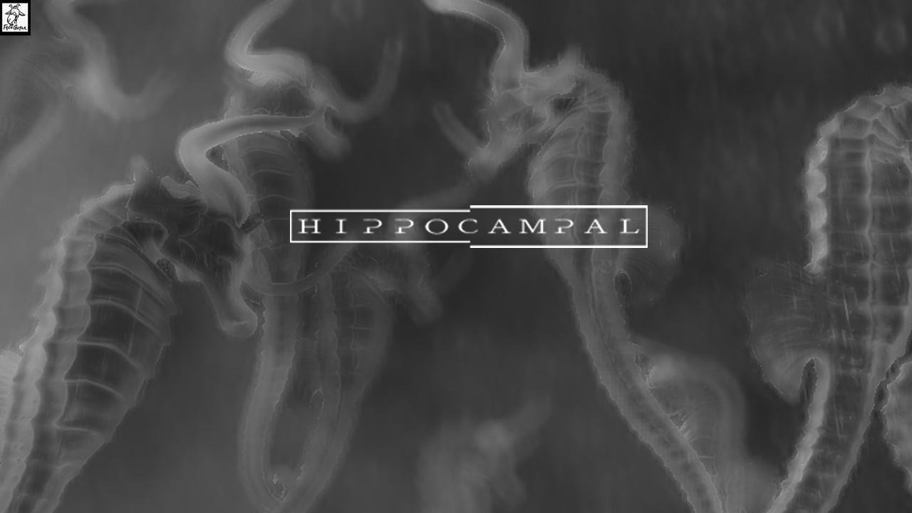 Hippocampal: The White Sofa screenshot