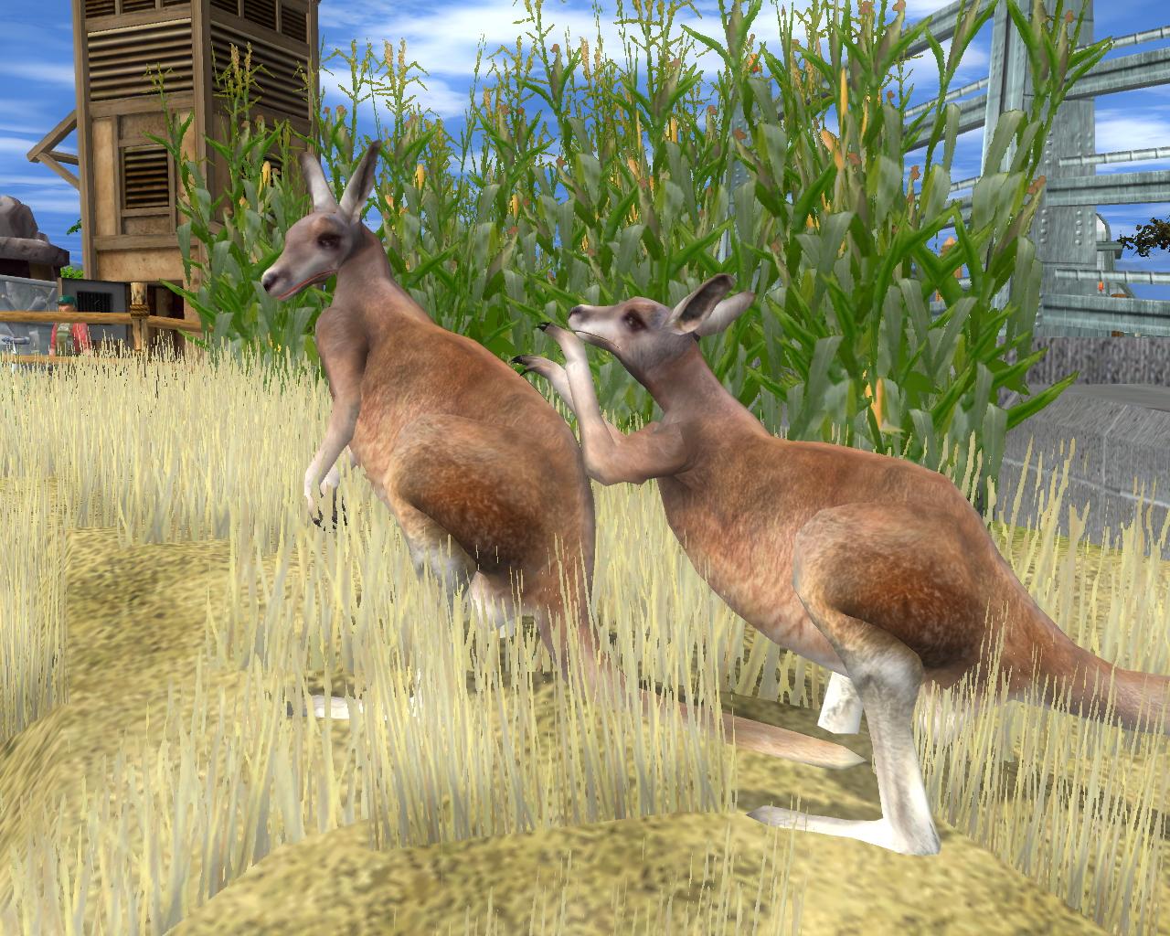 Wildlife Park 2 - Crazy Zoo screenshot