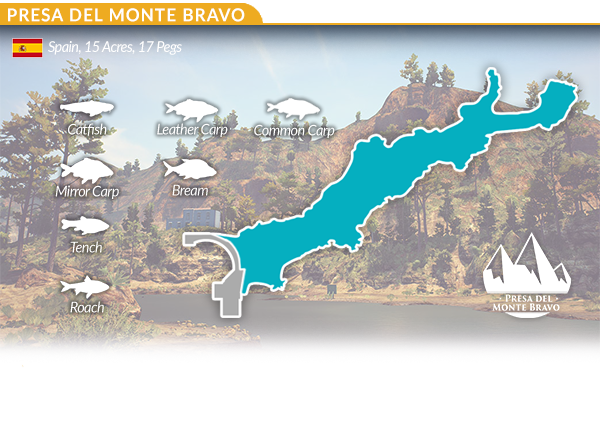 Steam_Presa_Del_Monte_Graphic_600.png?t=