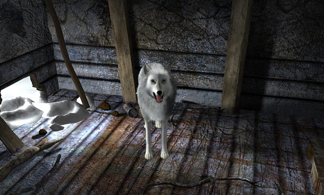 Nancy Drew: The White Wolf of Icicle Creek screenshot