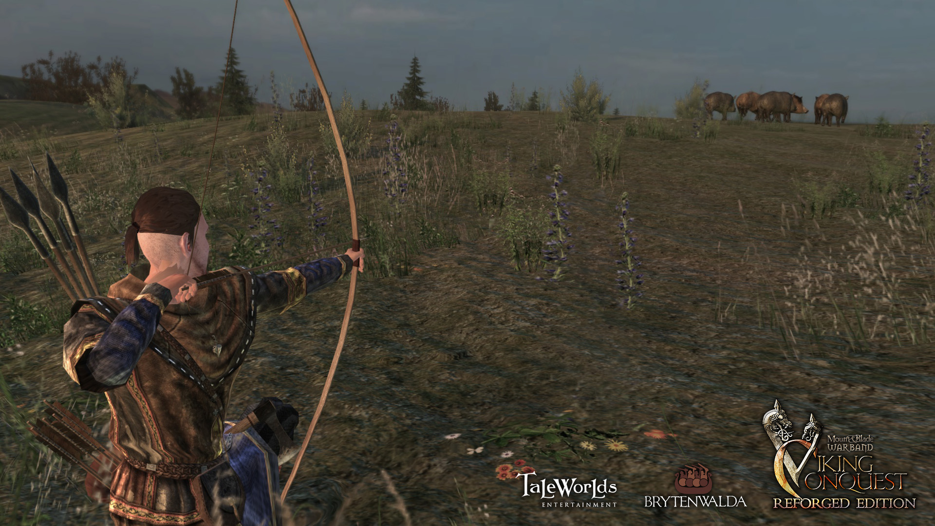 Mount & Blade: Warband - Viking Conquest Reforged Edition screenshot