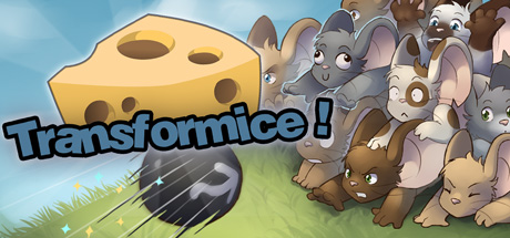 Play Transformice a free online game on Kongregate