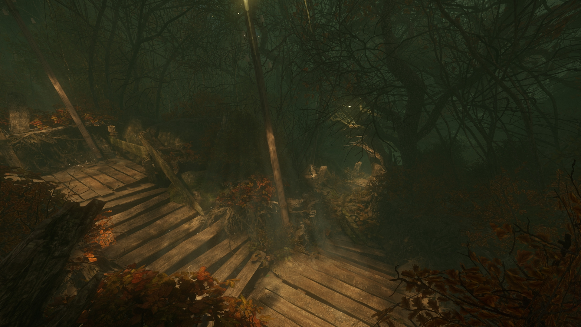 The Cursed Forest screenshot