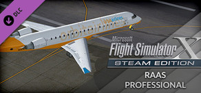 FSX: Steam Edition - RAAS Professional Add-On