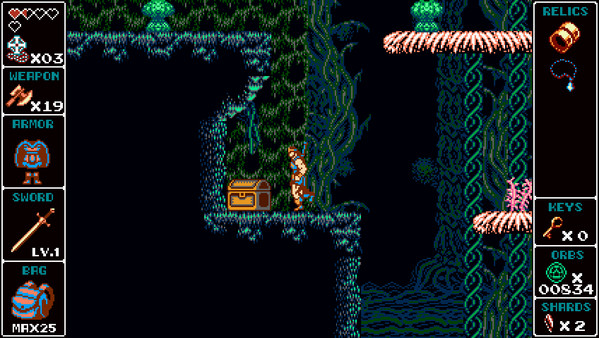 скриншот Odallus: Vampire Hunter Skin 3