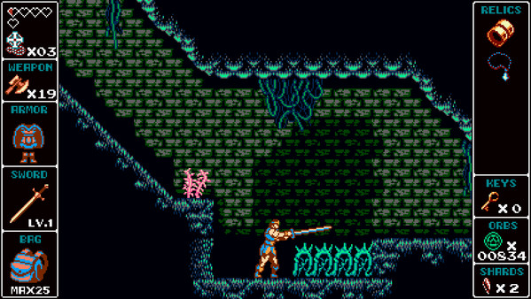 скриншот Odallus: Vampire Hunter Skin 2