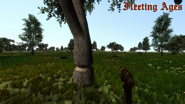 FLEETING AGES Free Iso Download Pc