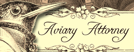 Now Available on Steam - Aviary Attorney, 15% off!