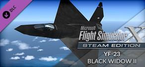 FSX: Steam Edition - YF-23 Black Widow II Add-On