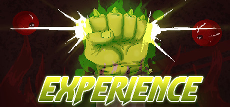 Experience game image