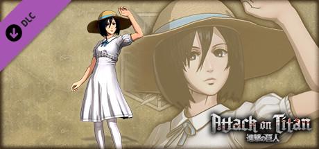 Mikasa Costume - Summer Festival