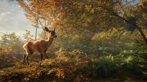 theHunter: Call of the Wild jeu pc telechargement