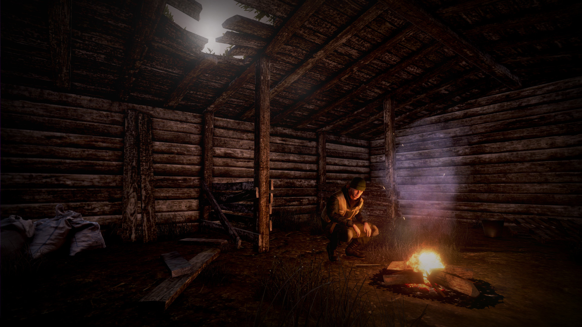 Next Day: Survival screenshot