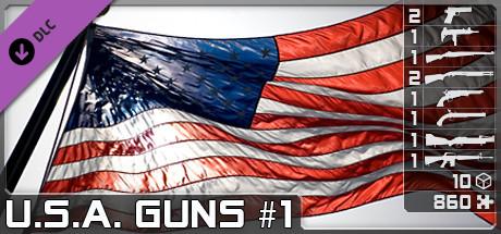 World of Guns: U.S.A. Guns Pack #1