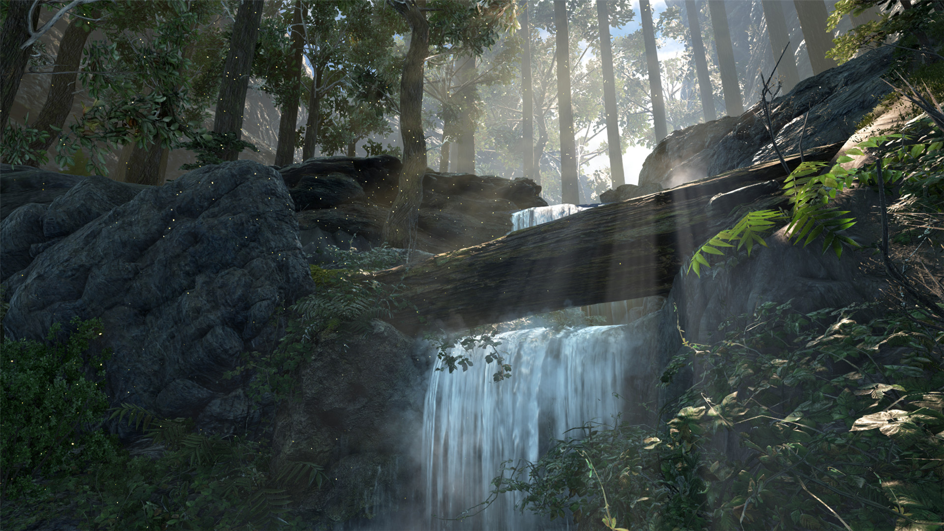 Dark and Light screenshot