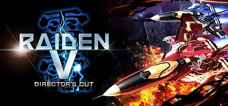 RaidenV: Director'sCut