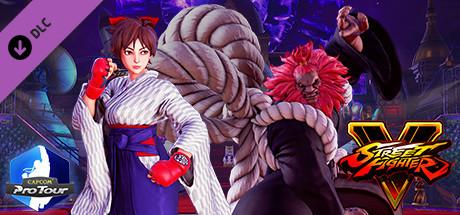 Street Fighter V - Capcom Pro Tour: 2018 Premier Pass