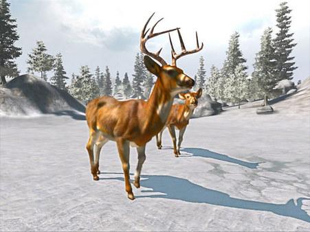 скриншот Cabela's Big Game Hunter Trophy Bucks 0
