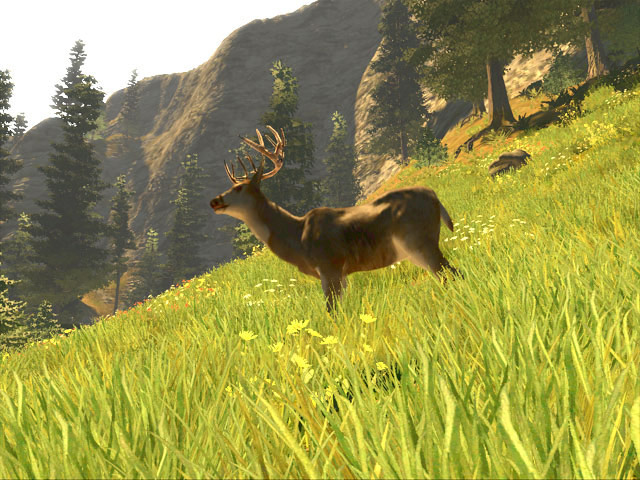 Cabela's Big Game Hunter Trophy Bucks screenshot