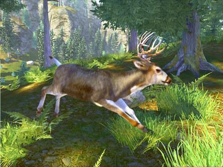 скриншот Cabela's Big Game Hunter Trophy Bucks 4