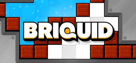 Briquid