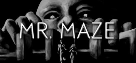 Mr. Maze