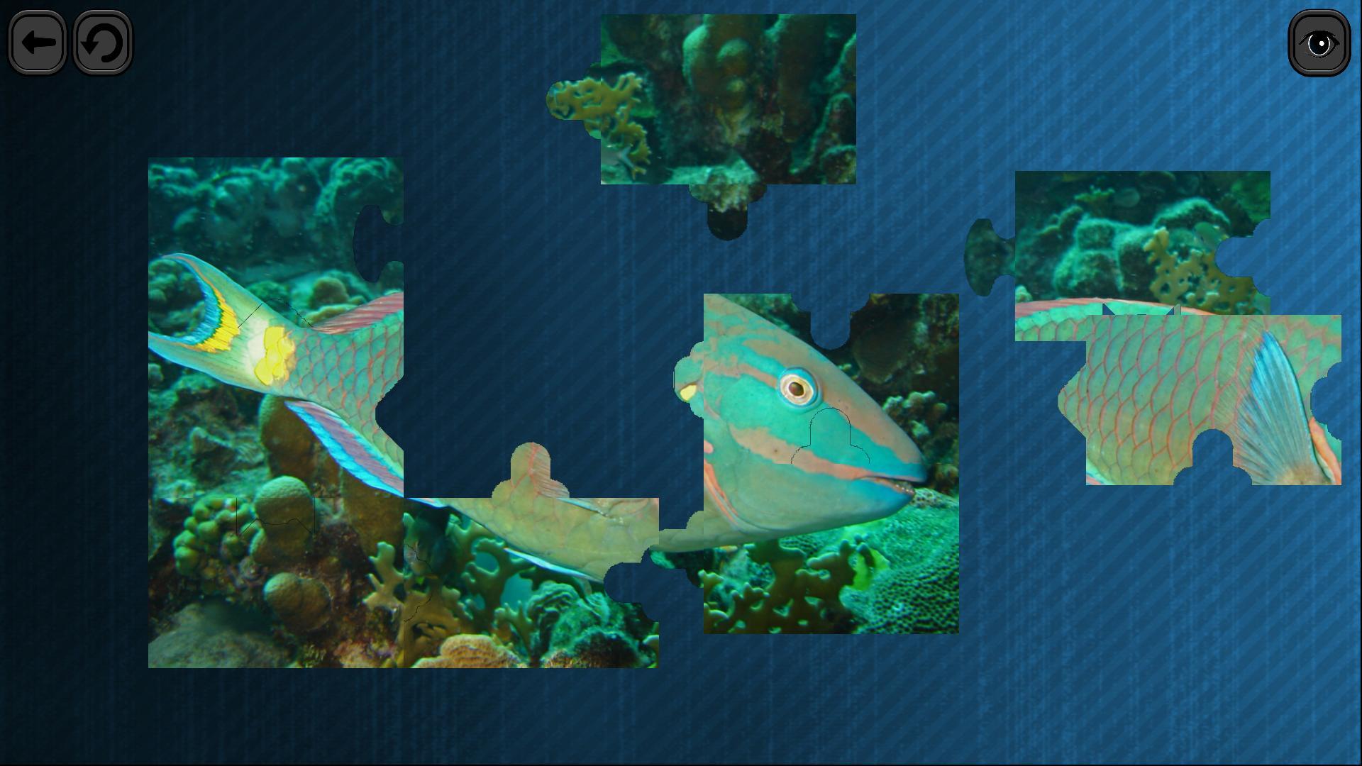 Puzzles for smart: Underwater Kingdom screenshot