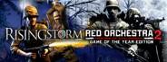 Rising Storm Beta mini icon