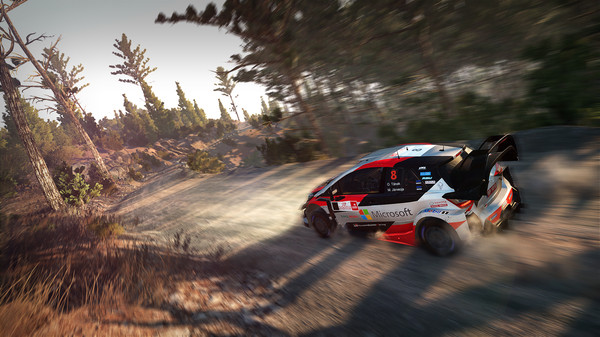 скриншот WRC 8 FIA World Rally Championship 2