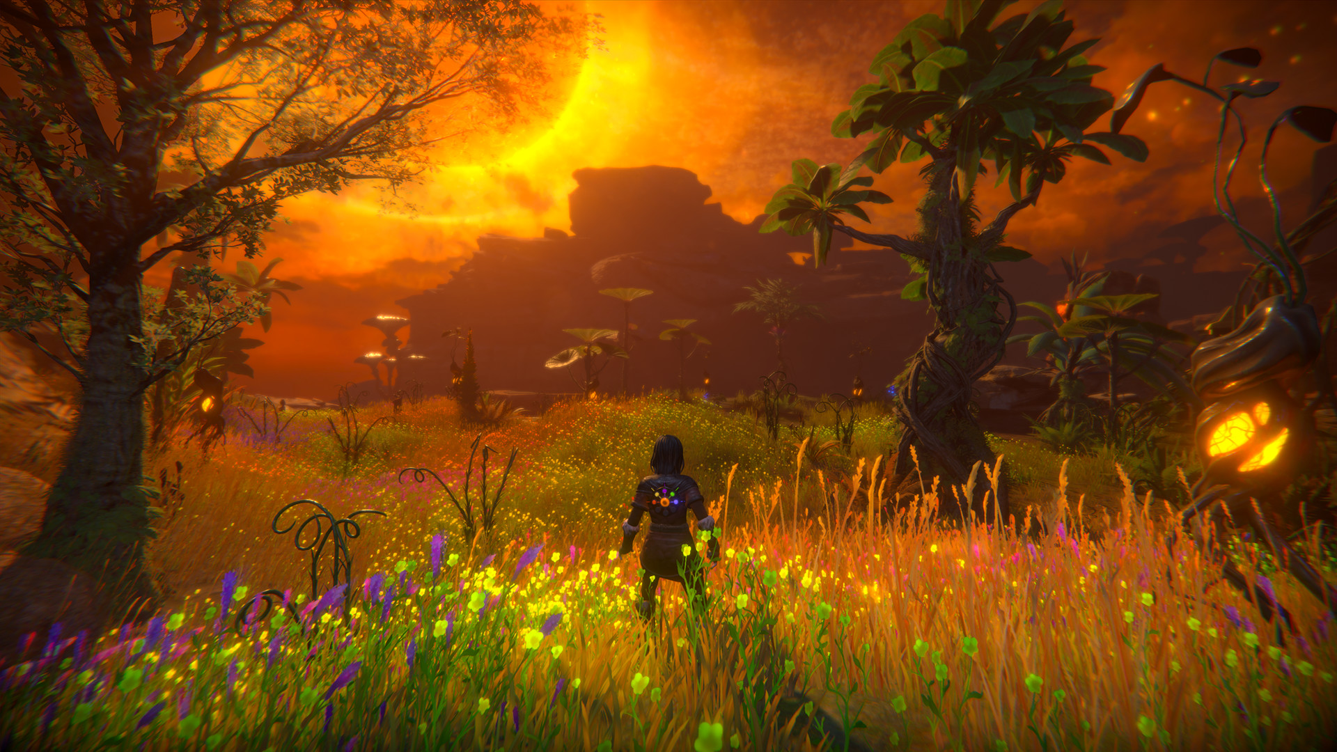 Seed of Life  Free Download