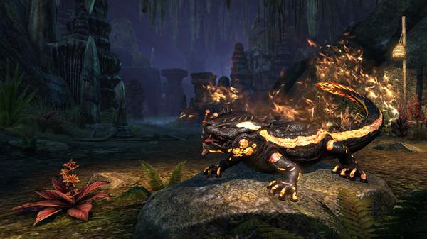 Скриншот №2 к The Elder Scrolls Online - Newcomer Pack