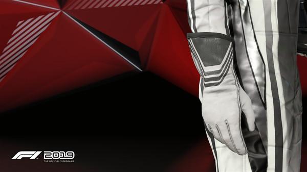 Скриншот №1 к F1 2019 Gloves Monochrome