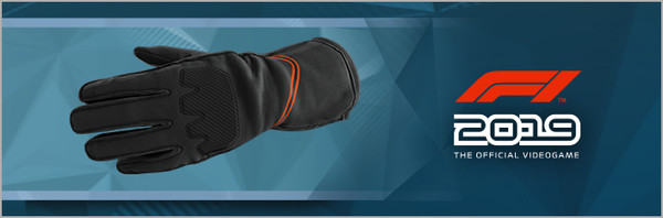 Скриншот №1 к F1 2019 Gloves Stealth