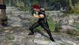 WARRIORS OROCHI 4 Ultimate - Bonus Costume for Ryu Hayabusa (DLC)