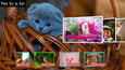 Jigsaw Puzzles for Kids and Adults - Cute (DLC)